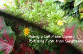 Faire une caméra de téléphone portable polarisant filtre de lunettes de soleil