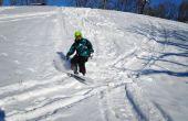 Planche à neige pour les débutants