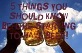 5 choses que vous devez savoir avant de commencer ont la bière !
