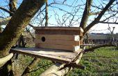 Boîte du nid pour Chouette chevêche - uniquement à des responsables de « Vieux continent »