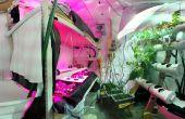 Comment construire un jardin hydroponique sous-sol