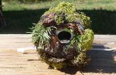 Petit Troglodyte Birdhouse d'un CAN. soude