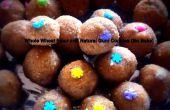 Farine de blé entier et naturel des gencives Cookies (sans cuisson)