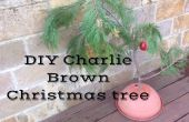 Charlie Brown Christmas Tree maison
