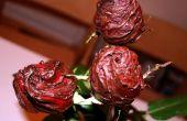 Comestibles Roses enrobées de chocolat