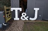 Carnaval/mariage lumineux lettres