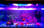 Aquarium LED éclairage    Haute intensité    Améliorer la couleur du poisson