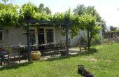 Terrasse de vigne