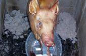 Porc rôtissage, broche Style