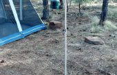 Titulaire de la lanterne de camping portable fait à Techshop Chandler