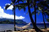Vacances à Hawaii