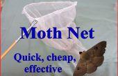 Papillon de nuit Net – rapide, bon marché et efficace