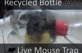 Recyclé bouteille piège à souris vivante