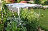 Construire un abri pour la culture de tomates