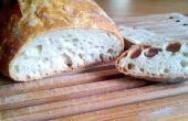 Aucun pétrissage | Recette du pain