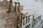 Comment faire « Moss Graffiti »