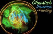 Glowstick Dissection et peinture