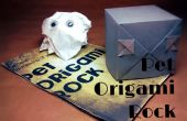 PET Rock Origami et manuel