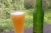 Rafraîchissantes alcoolisées bière de gingembre avec Orange