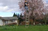 Comment faire pour « équilibrer » sur une échelle