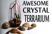 Terrarium de cristal géométrique de boîtiers de CD