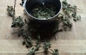 Herb décapant
