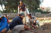 Comment créer un jardin communautaire