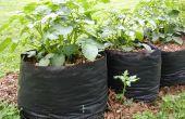 Tater Totes : Pomme de terre poussent sacs