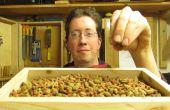 Cat Food creux du bois de palette