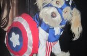 Iggy Wrigley as Captain America