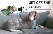 Dresseur de chiens invisible