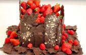 COMMENT FAIRE CHOCOLAT ÉCORCES, FEUILLES, PLAQUES ! MON GÂTEAU CHOCOLAT JARDIN !