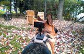 Dos de chien monté harnais de cuir caméra