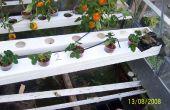 À alimentation par gravité jardin Hydoponic -