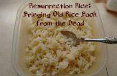 Riz de la résurrection : Ramener des vieux riz d'entre les morts