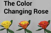 La couleur changeant Rose