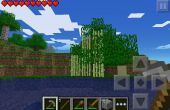 Comment obtenir la canne à sucre arbre W dedans
