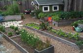 Agriculture urbaine : Soulevées lit jardinage