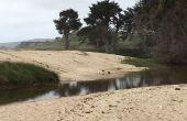 Storm Chaser plage activité (chasse au Trésor)