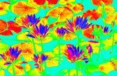 Super facile infrarouge comme photos (Photoshop)