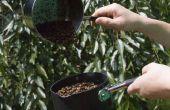 Rôti de votre propre café [méthode Pop Whirley]
