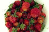 Sans gluten sans lactose sans cuisson des tartelettes aux fraises