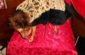 Cheetah chic pleine longueur robe avec chapeau pour chiens Miniture