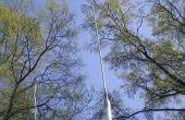 Talon de Tuning une antenne de CB gros bâton pour 10 mètres - Ham Radio