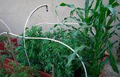 Construisez votre propre lit de jardin surélevé ! Cultivez votre propre nourriture !