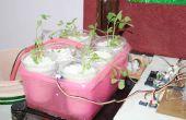 Culture hydroponique polyvalent et sol jardinage Solution
