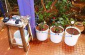 Automatique d'arrosage des plantes en pot avec Intel Edison