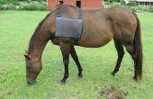 Gilet de la banquise pour cheval