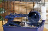La roue de Hamster vraiment silencieux