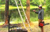 Comment faire pour couper un arbre